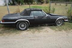 1986 Jaguar XJS (1)